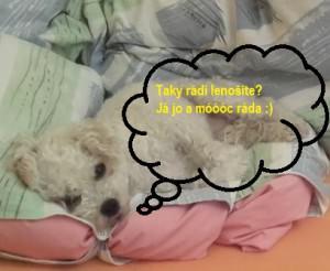 Xanty - dopoledni lenoseni_2